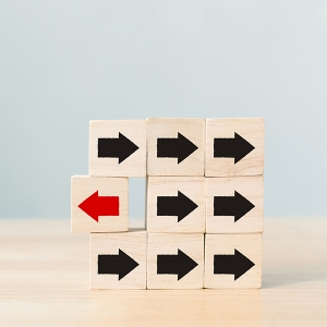 Wie externe Berater Change Management erfolgreich machen können