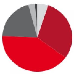 Umfrage unter Projektmanagern: 62 % der Zertifikanten haben die IAPM bereits weiterempfohlen